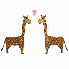 Hand drawn vector illustration, a pair of giraffes, romantic feelings and love concept, doodle illustration for your designs