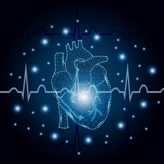 human heart polygon on ECG blue 3