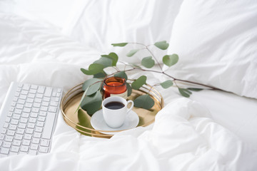 Keyboard and tray with coffe and branch of eualuptus Blogger's Morning in bed.