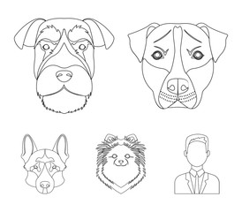 Muzzle of different breeds of dogs.Dog breed Stafford, Spitz, Risenschnauzer, German Shepherd set collection icons in outline style vector symbol stock illustration web.