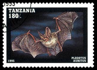 Postage stamp. Plecotus auritus  h.