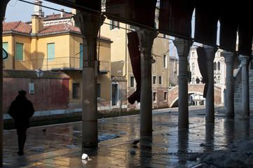 Venezia Mercato del Pesce