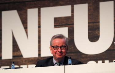 Michael Gove the Secretary of State for Environment, Food and Rural Affairs smiles after speaking during the National Farmers Union annual conference in Birmingham
