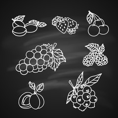 Fruits Sketch