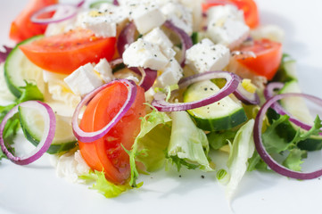 Fresh spring salad with cucumber, tomato, cheese and arugula isolated on a white plate