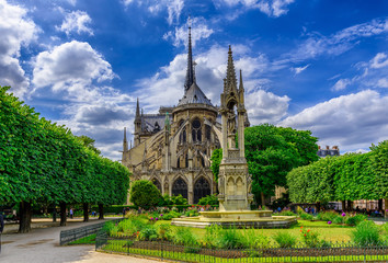 Wall Mural - Cathedral Notre Dame de Paris and Square Jean XXIII in Paris, France