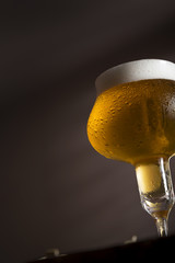 Glass of pale beer