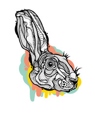Rabbit head isolated with graphic elements