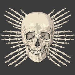 "Skull and bones ""vector"""