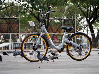 City bikes rent parking in Phuket Thailand