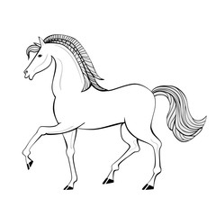 Hand drawn horse. Animal with beautiful mane and tail.