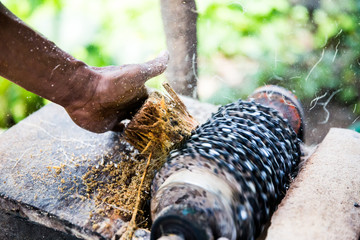 Grinding an edible tree in Indonesia