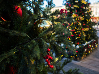 Christmas picture of decorated fir in street