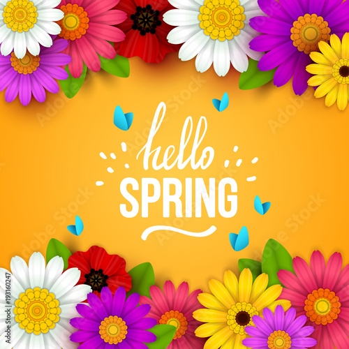 Colorful Spring Background With Beautiful Flowers Vector Illustration