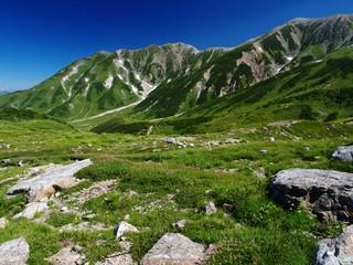 立山 登山コース