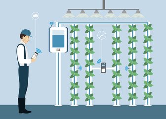 Wall Mural - Vertical greenhouse gardens. Growing micro greens.  Smart farm with wireless control. Vector illustration.