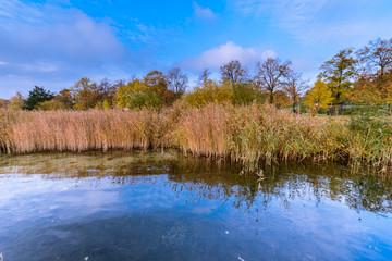 Am Uckersee im Herbst