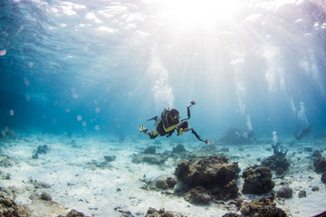 Scuba diving on coral reef underwater with rays light background.