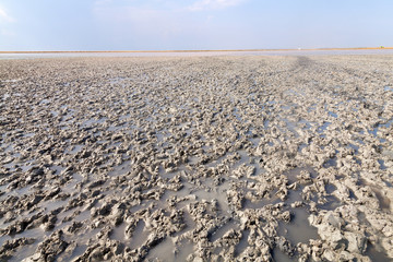 Clay in flat plain, steppe, salt, salt lake, heat and sky