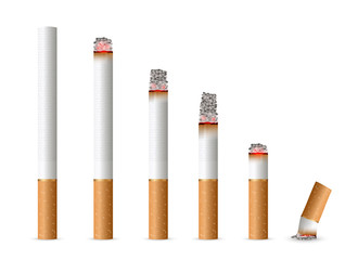 Creative vector illustration of realistic cigarette set isolated on transparent background. Art design different stages of burn. Abstract concept graphic element