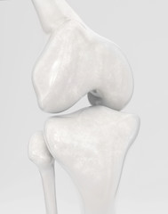 Knee without modern knee prosthesis - 3D Rendering