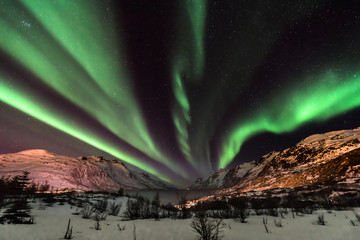 Photo sur Aluminium Aurore polaire Aurora Borealis (northern lights) in North Norway - Tromso, Kvaloya, Ersfjordbotn