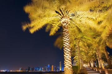 Palm tree surrounding the skyline of Doha Qatar at night