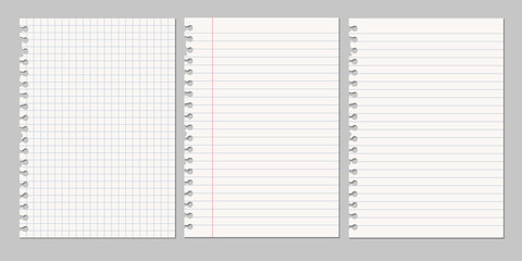 Set of vector realistic illustrations of a torn sheet of paper from a workbook with shadow, isolated