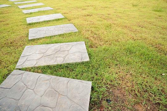 Green meadow divided by rough stone walkway,Stamped concrete
