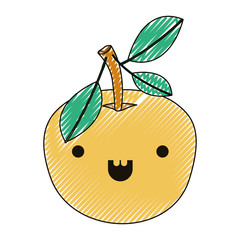 orange fresh and citrus fruit kawaii character vector illustration design