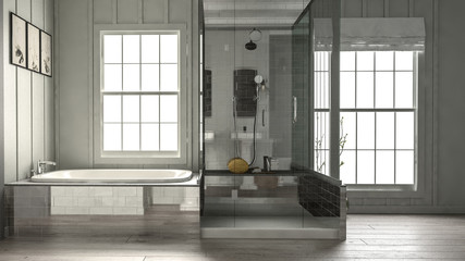 Modern luxury bathroom interior with shower