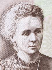 Marie Sklodowska Curie portrait from Polish money