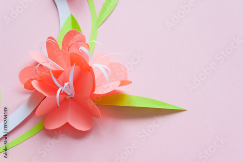 Frame with color paper flowers on the pink background flat lay frame with color paper flowers on the pink background flat lay nature concept mightylinksfo