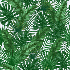 Tropical leaves seamless pattern. Jungle green background. Vector illustration
