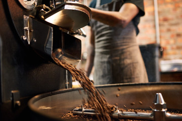 African man wearing an apron busy pouring coffee beans from the coffee roasting machine over to the tray that stirs the beans until they are cool enough to be packaged.