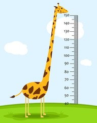 Meter wall or baby scale of growth with Giraffe on the grass. Kids height chart. scale from 40 to 150 centimeter. Vector illustration