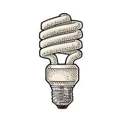 Energy saving spiral lamp. Vector vintage engraving on white background