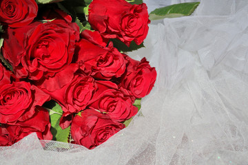 Floral background with red roses. Bunch of bright red roses with green leaves on a white veil close up. Love concept.