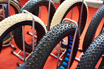 Fat bicycle tires in store
