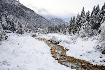 torrente Canali in inverno - Val Canali, nel parco naturale di Paneveggio - Trentino