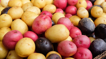 Organic Farmers Market Potatoes