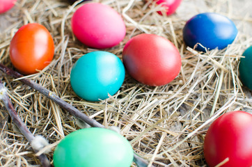 Easter eggs and willow branch on old wooden boards and hay