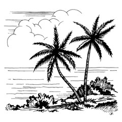 Palms and the sea sketch