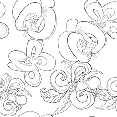 coloring seamless pattern with  Florida dogwood flower   illustration