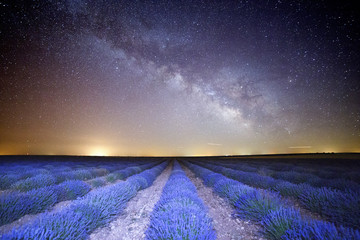 Night photograph with milky way in lavender field of Brihuega, Guadalajara, Castilla La Mancha, Spain