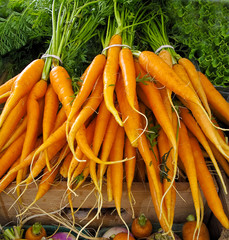 Carrots for sale at Farmers Market