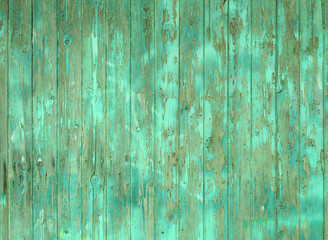 old wooden plank wall or fence with old faded peeling green paint