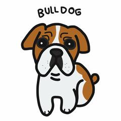 Bull Dog cartoon doodle style
