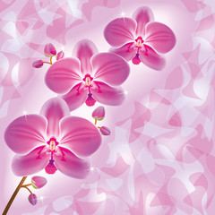 Invitation or greeting card with orchid in grunge style