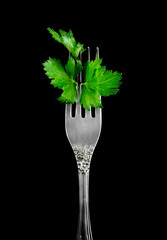 Parsley on a fork, isolated, black background